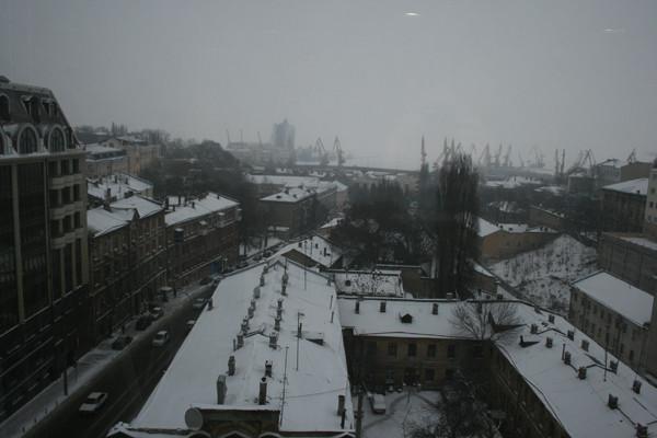 Вид из Яндекс-окна