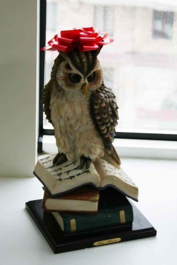 Сова с книгами