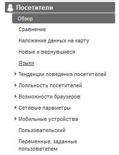 Раздел Посетители в Google Analytics