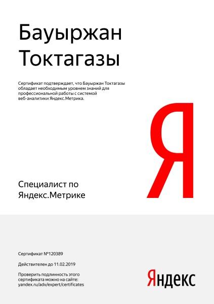 Бауыржан Alpha — Yandex.Metrica