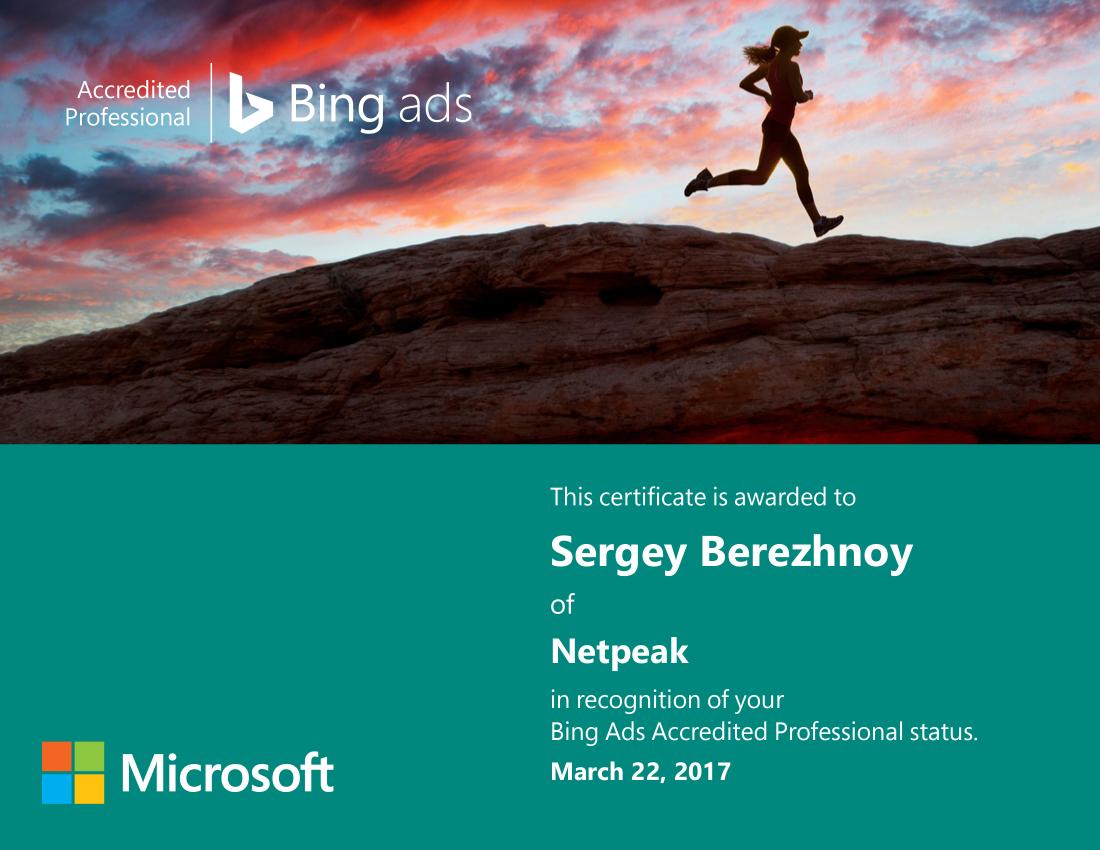 Sergey Berya – Bing Ads