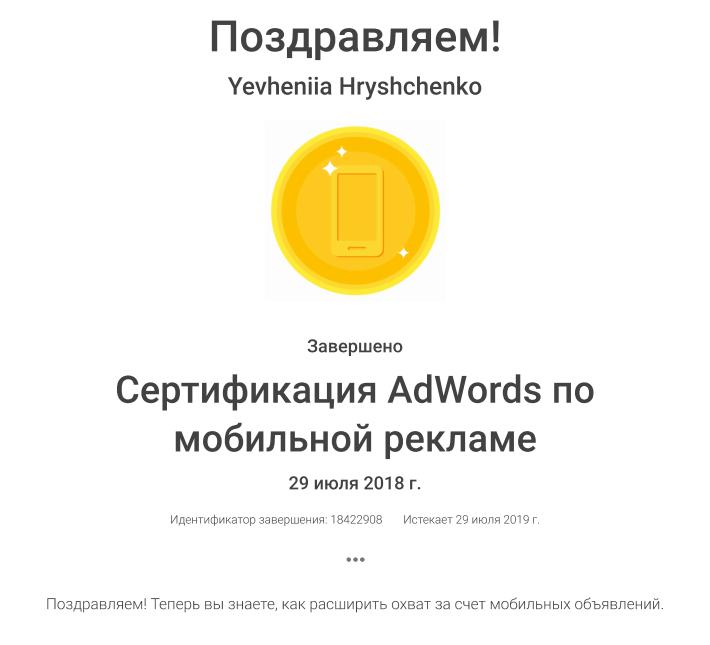 Yevheniia Thirteen – Google AdWords